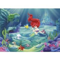 Disney Edition 4-463 Disney Arielle Duvar Posteri