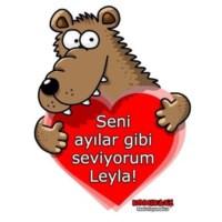 BuldumBuldum Erdil Yaşaroğlu Ayılar Gibi Seviyorum Ürünleri - İphone 5 Kılıfı