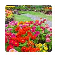 Fotografyabaskı Renkli Bahçe Bardak Altlığı Baskı 4'lü Set