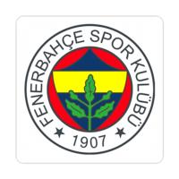 Fotografyabaskı Bardak Altlığı Baskı 4'lü Set Fenerbahçe Spor Kulübü