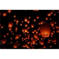 Vip 10 Adet Dilek Feneri