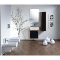 Creavit Mass Banyo Mobilyası 50 Cm Ayna+Etajer