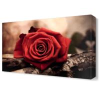 Dekor Sevgisi Gül Tablosu 45x30 cm