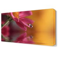 Dekor Sevgisi Suya Düşen Çiçek Tablosu 45x30 cm