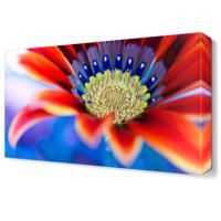 Dekor Sevgisi Kırmızı Renkli Çiçek Tablosu 45x30 cm