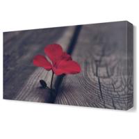 Dekor Sevgisi Kırmızı Çiçek3 Tablosu 45x30 cm