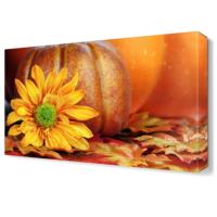 Dekor Sevgisi Kabak Çiçeği Tablosu 45x30 cm