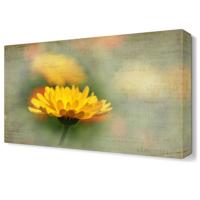 Dekor Sevgisi Sarı Papatya3 Tablosu 45x30 cm