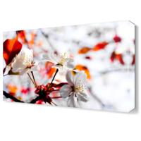 Dekor Sevgisi Kırmızılı Beyazlı Çiçek Tablosu 45x30 cm