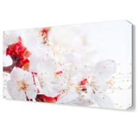 Dekor Sevgisi Sevimli Çiçek Tablosu 45x30 cm