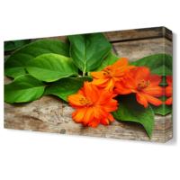 Dekor Sevgisi Turuncu Çiçekler Tablosu 45x30 cm