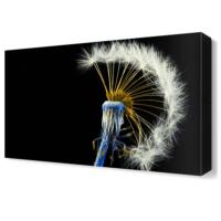 Dekor Sevgisi Karahindiba2 Tablosu 45x30 cm