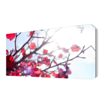 Dekor Sevgisi Daldaki Kırmızı Yapraklar Canvas Tablo 45x30 cm