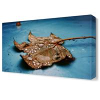 Dekor Sevgisi Mavi Zemin Tablosu Tablosu 45x30 cm