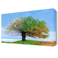 Dekor Sevgisi Dört Mevsim Ağacı Canvas Tablo 45x30 cm