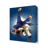 Dekor Sevgisi Judo Tablosu 45x30 cm