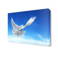 Dekor Sevgisi Uçan Beyaz Güvercin Tablosu 45x30 cm