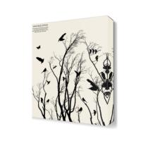 Dekor Sevgisi Siyah Beyaz Kuşlar Tablo 45x30 cm