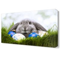 Dekor Sevgisi Sevimli Tavşan Canvas Tablo 45x30 cm