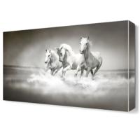 Dekor Sevgisi Beyaz Atlar Canvas Tablo 45x30 cm