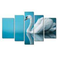 Dekor Sevgisi Beyaz Kuğu Tablosu 84x135 cm