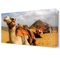 Dekor Sevgisi Deve ve Mısır Piramitleri Canvas Tablo 45x30 cm