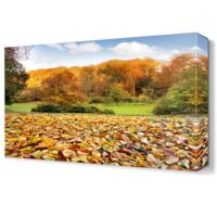 Dekor Sevgisi Dökülmüş Yapraklar Canvas Tablo 45x30 cm