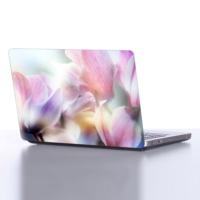 Decor Desing Laptop Sticker Dlp012