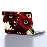Decor Desing Laptop Sticker Dlp054
