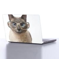 Decor Desing Laptop Sticker Dlp071