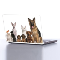 Decor Desing Laptop Sticker Dlp098