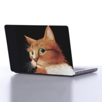 Decor Desing Laptop Sticker Dlp236