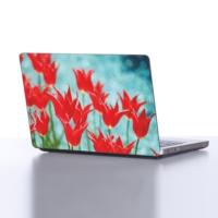 Decor Desing Laptop Sticker Le031