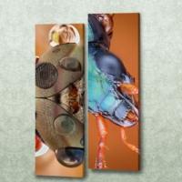 Decor Desing 2'li Dikdörtgen Kanvas Tablo Seti Sel024