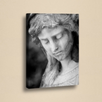 Decor Desing 50 X 70 Cm Kanvas Tablo Zey019
