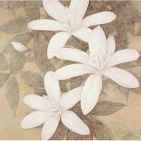 Decor Desing Dekoratif Mdf Tablo Mdftek201