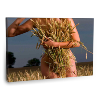 Fotografyabaskı Wheat Field Tablo 75 Cm X 50 Cm Kanvas Tablo Baskı