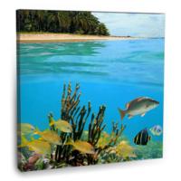 Fotografyabaskı Caribbean Denizi Tablo Panama 70 Cm X 70 Cm Kanvas Tablo