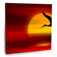 Fotografyabaskı Kuş Silüeti Tablosu 70 Cm X 70 Cm Kanvas Tablo Baskı