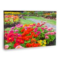 Fotografyabaskı Renkli Çiçekler Tablo 75 Cm X 50 Cm Kanvas Tablo Baskı