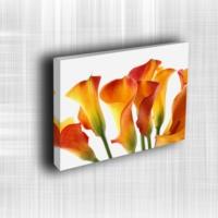 Doku Canvas Baskı Çiçek- CIGE756
