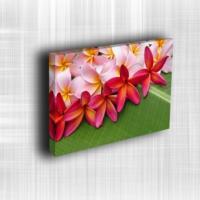 Doku Canvas Baskı Çiçek- CIGE539
