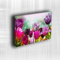Doku Canvas Baskı Çiçek- CIGE395