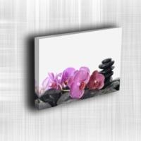 Doku Canvas Baskı Çiçek- CIGE665