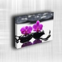 Doku Canvas Baskı Çiçek- CIGE625