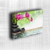 Doku Canvas Baskı Çiçek- CIGE588