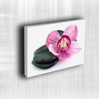 Doku Canvas Baskı Çiçek- CIGE582
