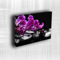 Doku Canvas Baskı Çiçek- CIGE601