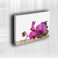 Doku Canvas Baskı Çiçek- CIGE648