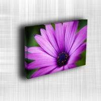 Doku Canvas Baskı Çiçek- CIGE564